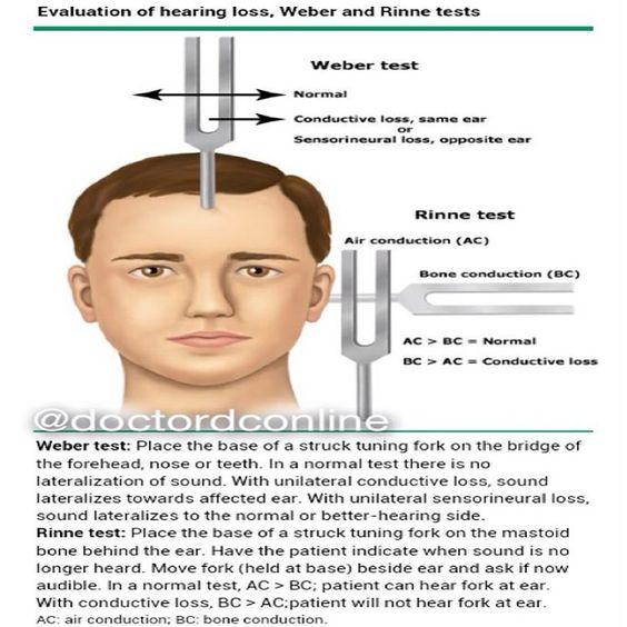 case 4 – hearing loss – hennepin dive talks & videos, Skeleton